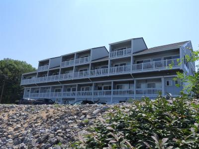 Bedford County Condo/Townhouse For Sale: 16109 Smith Mountain Lake Parkway