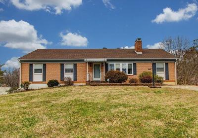 Evington, Rustburg, Lynchburg Single Family Home For Sale: 445 Beechwood Drive