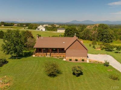 Bedford County Single Family Home For Sale: 3255 Otter Hill