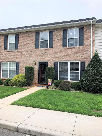 Bedford County Condo/Townhouse For Sale: 1252 Blue Ridge View Circle