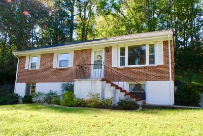 Lynchburg County Single Family Home For Sale: 1023 Ardmore Drive