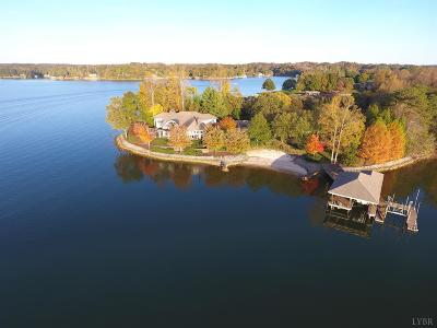 Bedford County Single Family Home For Sale: 134 Freeboard Drive