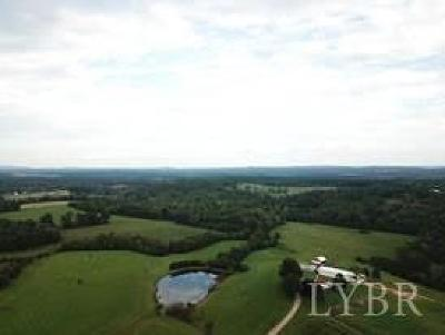 Bedford County Single Family Home For Sale: 9862 Smith Mountain Lake Pkwy