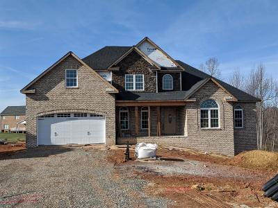 Bedford County Single Family Home For Sale: 1088 Cedar Sky Court