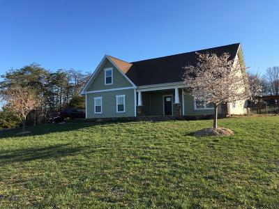 Single Family Home For Sale: 1057 Telford Road