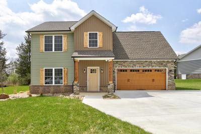 Campbell County Single Family Home For Sale: 166 Crystal Lane