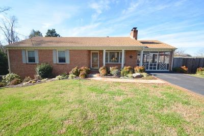 Lynchburg Single Family Home For Sale: 101 Hook Drive
