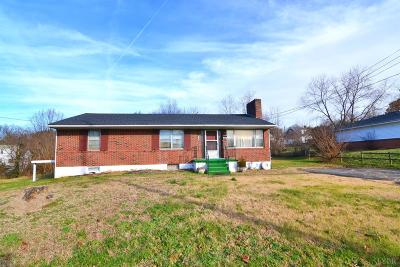 Lynchburg Single Family Home For Sale: 1128 Moseley Drive