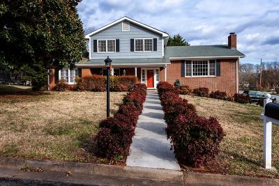 Lynchburg Single Family Home For Sale: 3301 Sky View Place