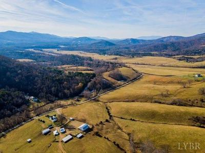 Amherst County Residential Lots & Land For Sale: 866 Mollys Mountain Road