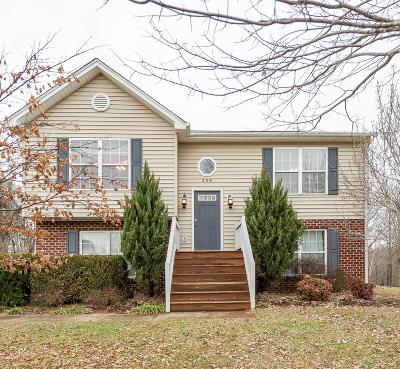Lynchburg Single Family Home For Sale: 236 Towne Crier