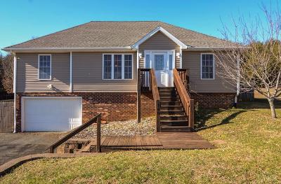 Campbell County Single Family Home For Sale: 168 Russell Springs Drive