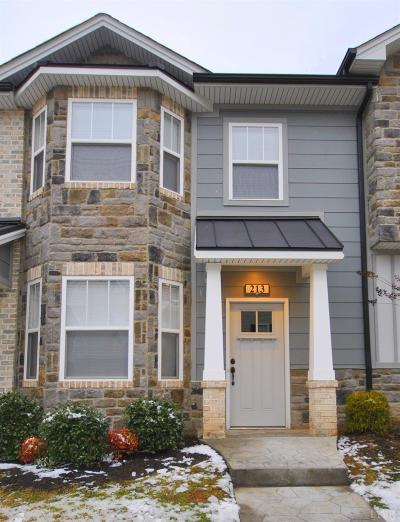 Lynchburg Condo/Townhouse For Sale: 213 Capstone Drive