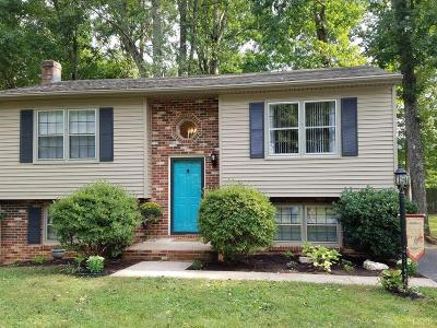 Bedford County Single Family Home For Sale: 101 Shadwell Drive