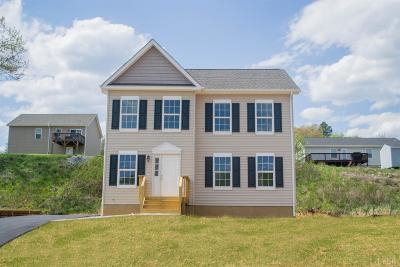 Madison Heights VA Single Family Home For Sale: $209,950