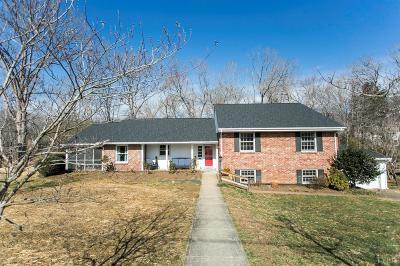 Lynchburg County Single Family Home For Sale: 1519 Club Drive
