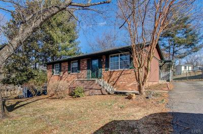 Lynchburg County Single Family Home For Sale: 6317 Pawnee Drive