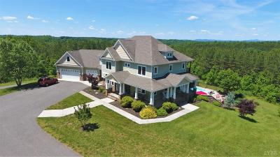 Bedford County Single Family Home For Sale: 1249 Lees Mill Lane