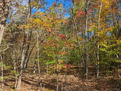 Appomattox County Residential Lots & Land For Sale: Spring Grove Road