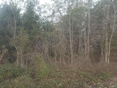 Lynchburg County, Bedford County, Amherst County, Nelson County, Appomattox County, Campbell County, Pittsylvania County Residential Lots & Land For Sale: Robinson Road