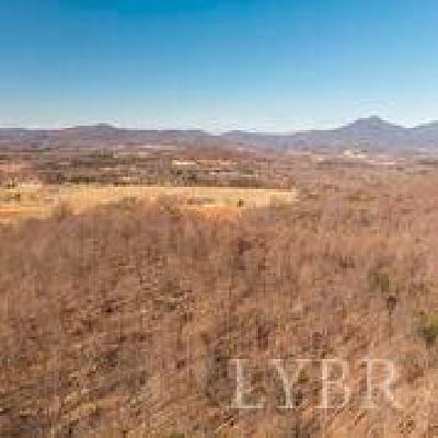 Lynchburg County, Bedford County, Amherst County, Nelson County, Appomattox County, Campbell County, Pittsylvania County Residential Lots & Land For Sale: Fairfield Road