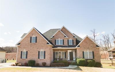 Bedford County Single Family Home For Sale: 2123 Colby Drive