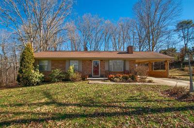 Altavista Single Family Home For Sale: 1803 Avondale Drive
