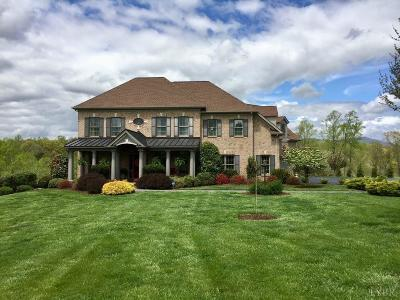 Lynchburg Single Family Home For Sale: 1518 Trents Meadow Lane