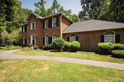 Lynchburg County Single Family Home For Sale: 4740 John Scott Drive