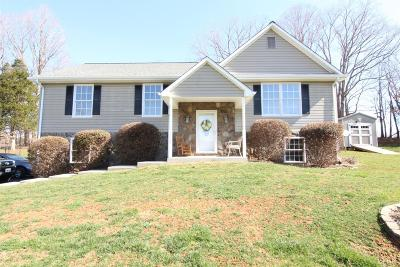 Bedford County Single Family Home For Sale: 2665 Twin Lake Drive