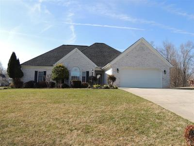 Lynchburg County Single Family Home For Sale: 600 Susannah Place