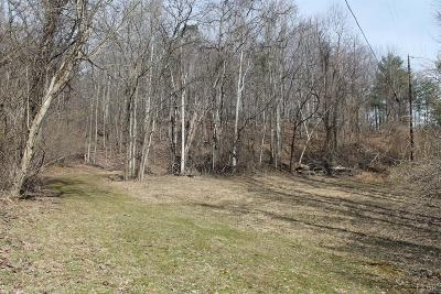 Amherst County Residential Lots & Land For Sale: 1303 Wares Gap Road