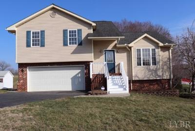 Evington, Rustburg, Lynchburg Single Family Home For Sale: 55 Russell Springs Drive