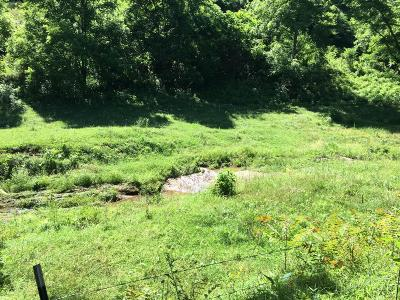 Amherst VA Residential Lots & Land For Sale: $79,900
