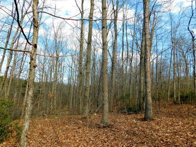 Amherst County Residential Lots & Land For Sale: 61 Bryant Hollow Road