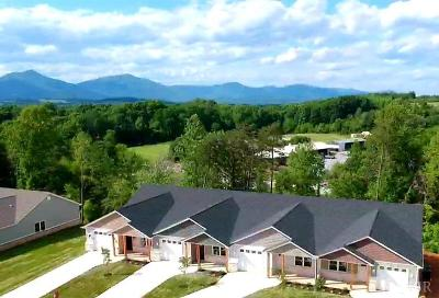 Bedford County Condo/Townhouse For Sale: 1317 Emerald View Court