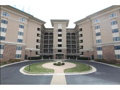 Bedford County Condo/Townhouse For Sale: 100 Bridgewater Pointe Place #408