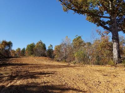 Campbell County Residential Lots & Land For Sale: Holcomb Path Road