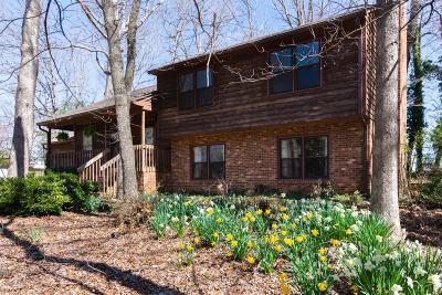 Bedford County Single Family Home For Sale: 1085 Ivy Woods Drive
