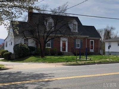 Lynchburg Single Family Home For Sale: 4700 Fort Avenue