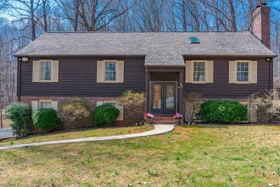 Bedford County Single Family Home For Sale: 102 Woodville Drive