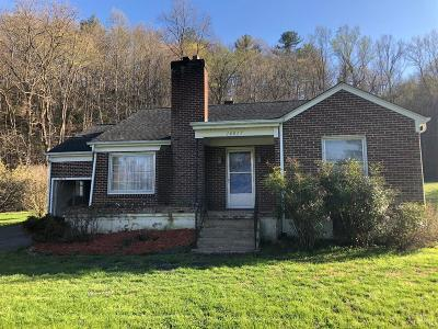 Bedford County Single Family Home For Sale: 16817 Big Island Highway