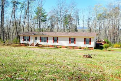 Madison Heights Single Family Home For Sale: 457 Hayshed Road