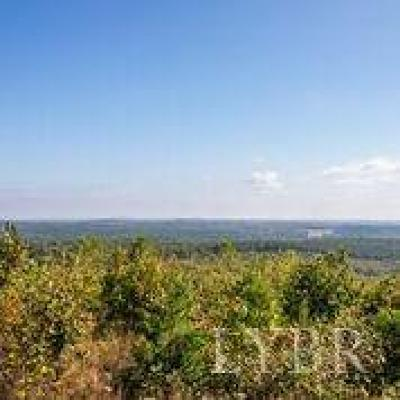 Appomattox County Residential Lots & Land For Sale: Forest Chapel Road