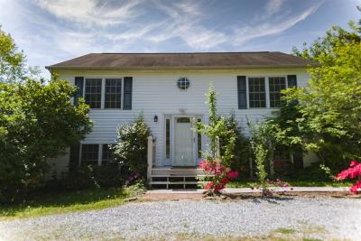 Evington Single Family Home For Sale: 556 Alum Springs