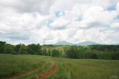 Bedford County Residential Lots & Land For Sale: Three Otters & Patterson Mill Road