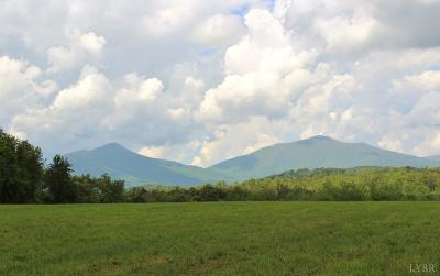 Bedford County Residential Lots & Land For Sale: Patterson Mill Road