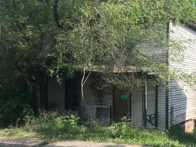 Lynchburg Single Family Home For Sale: 1917 Bluff Street