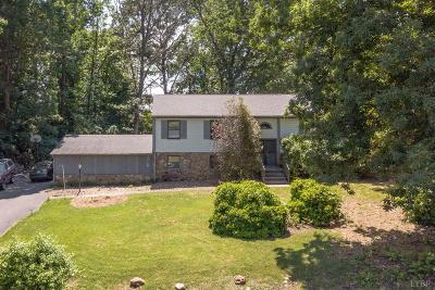 Lynchburg Single Family Home For Sale: 101 Blumont Drive