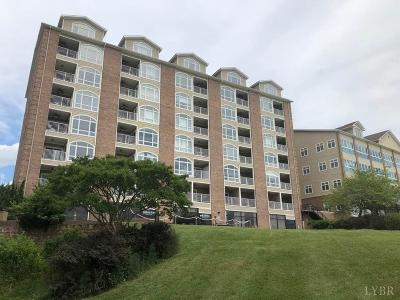 Bedford County Condo/Townhouse For Sale: 1245 Graves Harbor Trail #2302